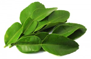 Lime, Kaffir