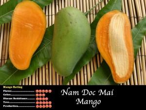 Nam Doc Mai