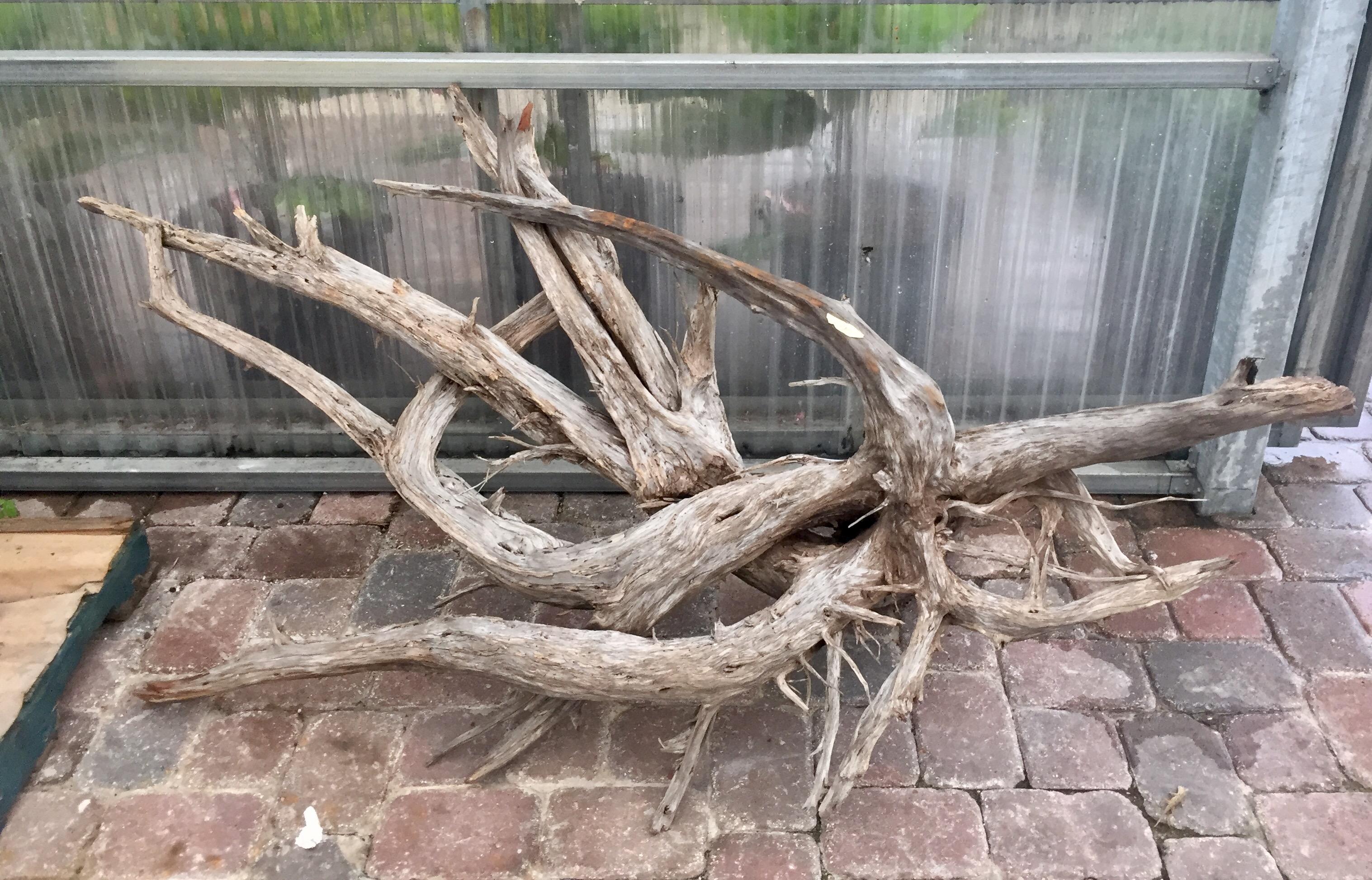 Driftwood #B2