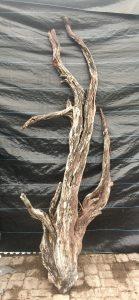 Driftwood #B4