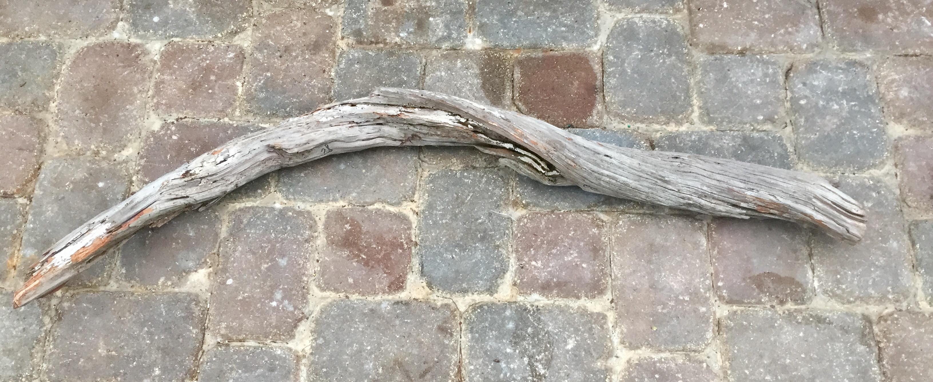 Driftwood #B6