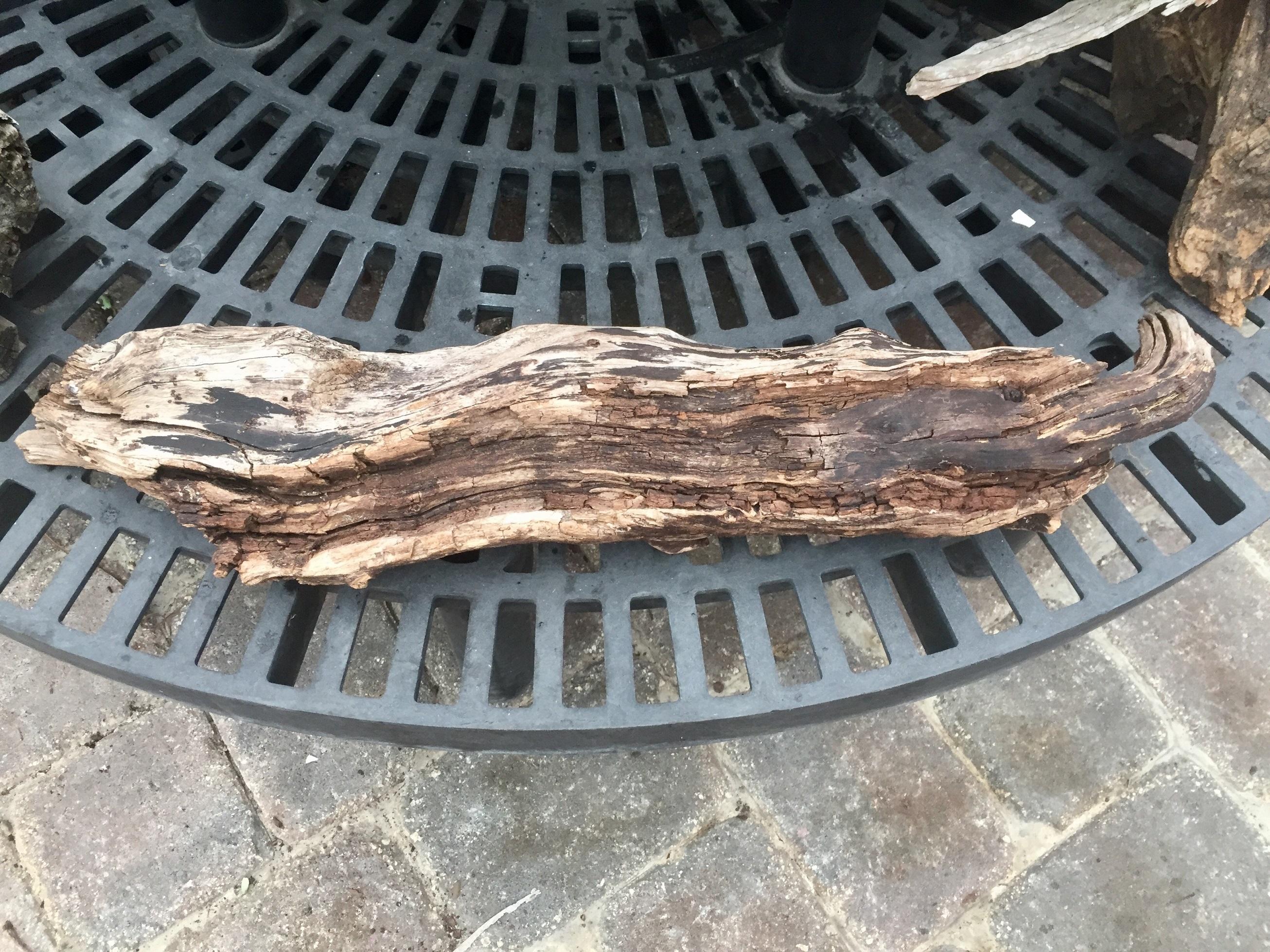 Driftwood #S8