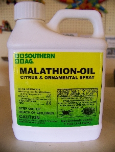 Malathion Oil